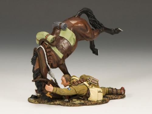 AL024 - Collapsing Australian Horseman