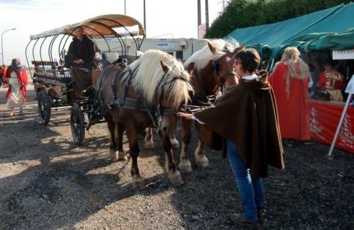 Gouy-lez-Piéton 2014 - Charette romaine