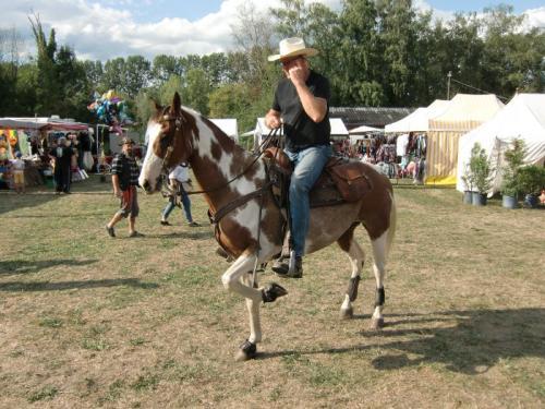 Havré 2019 - Camp ... cheval à l'exercice
