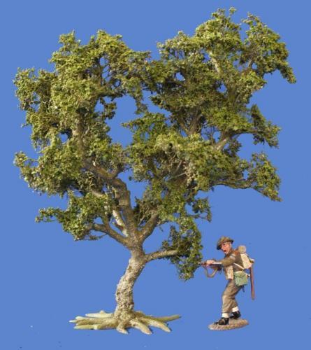 JG Miniatures - S02 - Small oak tree (petit chêne)