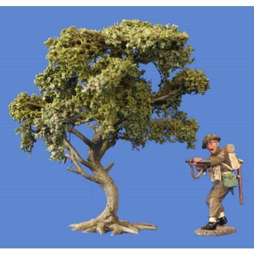 JG Miniatures - S04 - Bush Oak (chêne-buisson)