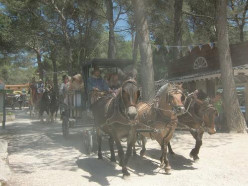 OK Corral - parade en rue avec divers charrettes