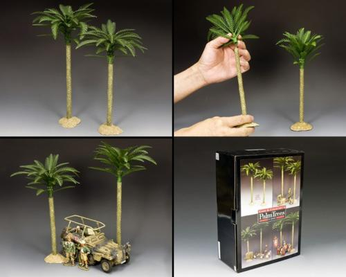 SP111 - KC's Palm trees